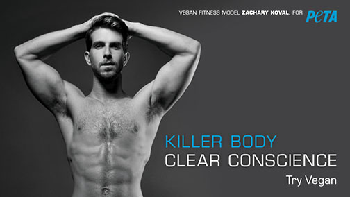 "An ad from PETA that promotes veganism with a photo of a bodybuilder and the words ""Killer Body. Clear Conscience."""